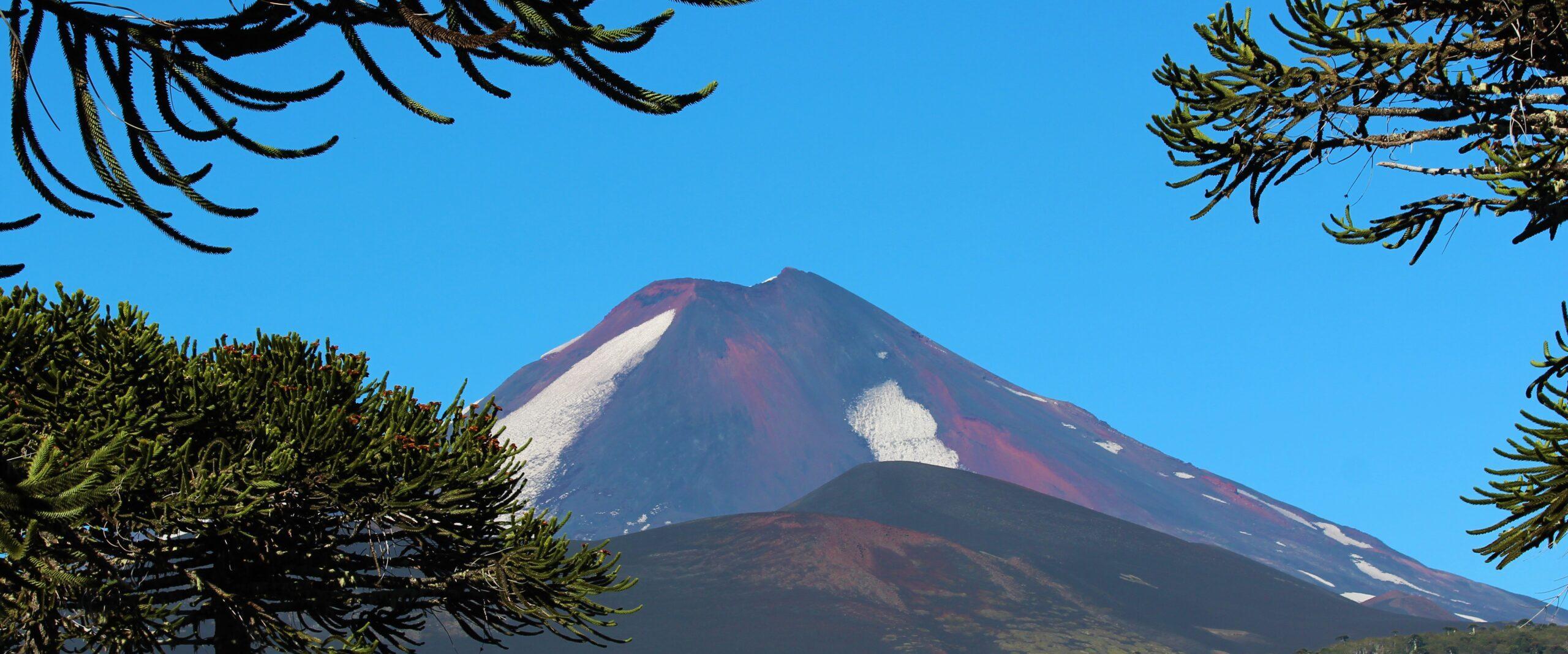 11 – Vulkane und Araukarien begleiten uns